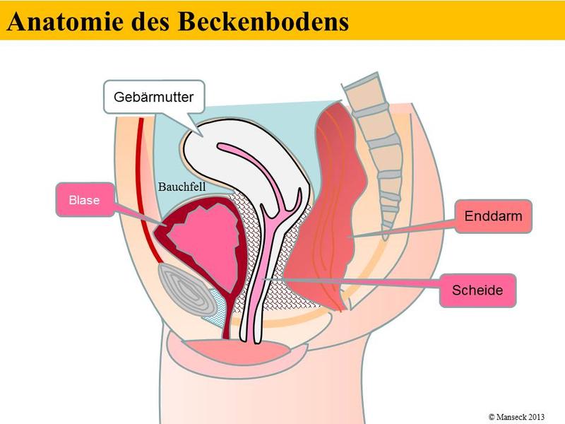 Klinikum Ingolstadt GmbH - Harninkontinenz und Beckenbodenschwäche