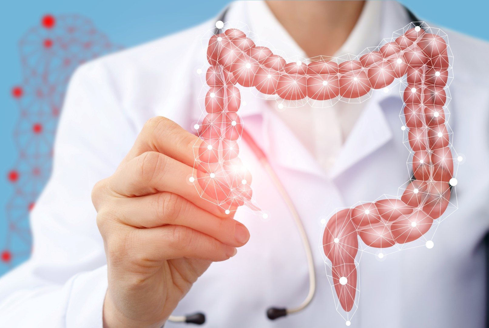 Ein Arzt zeichnet die Struktur des Darms mit einem Stift nach.