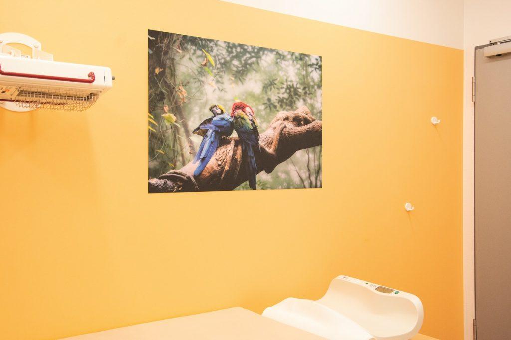 Wandbilder Kindernotfallpraxis